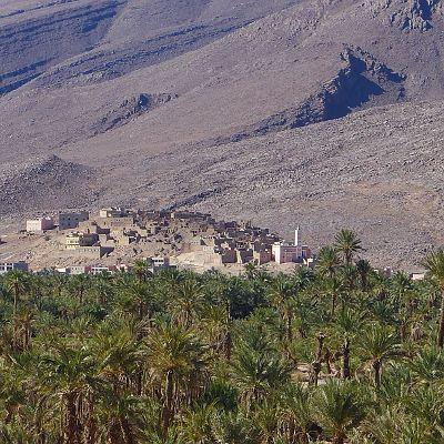 Bild aus Marokko. Oase Foum Zguid